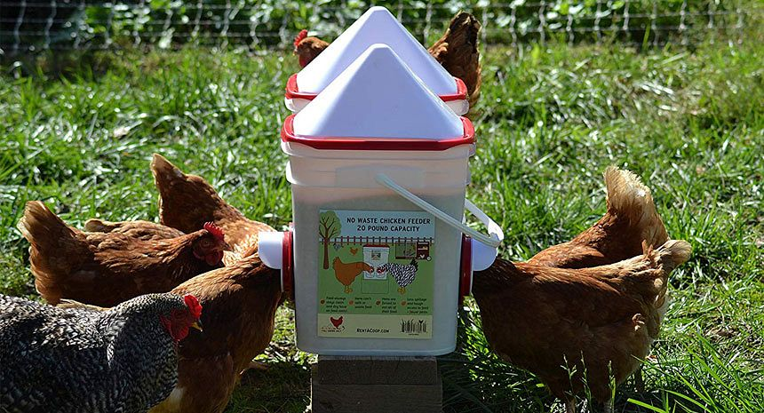 "Plastic Chick Chicken Feeder Waterer 18/"" Long 5/"" Wide"